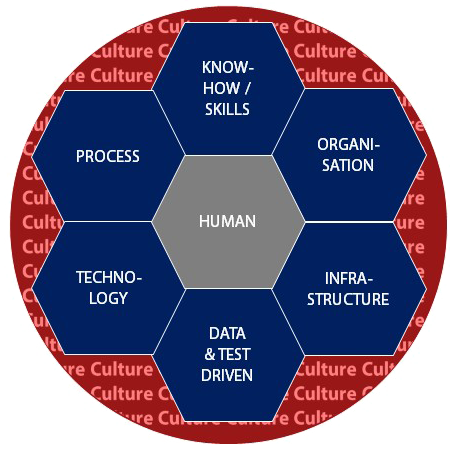 Carpathia Digital Culture Model